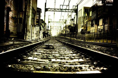 sunset japan train subway geotagged tokyo vanishingpoint lowlight nikon publictransit dusk railway transportation duotone hdr railroadtracks d300 shimotakaido geo:lat=35666225 3exposurehandheldhdr akatsutsumi nikon35mmf18dx 35°3958n 139°3827e itsanonthebellyshot wadahommachi geo:lon=139640806