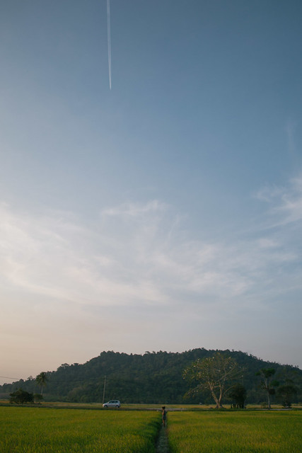 Aircraft leave streaks across the sky.