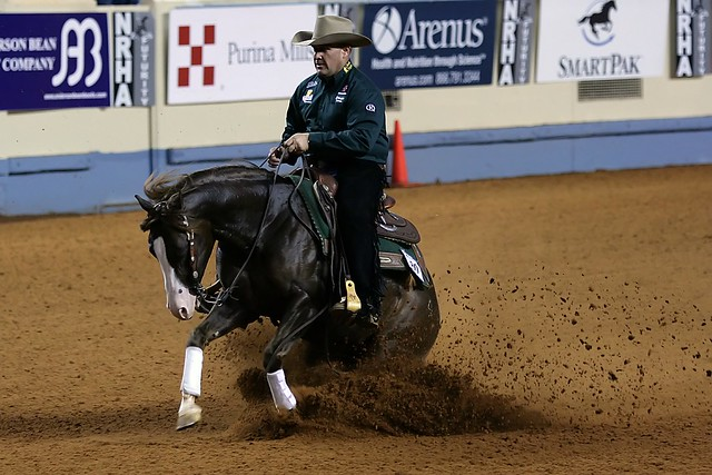 Reining Pictures 84