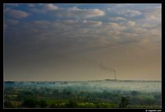 Morning Mist & Sugar Factory