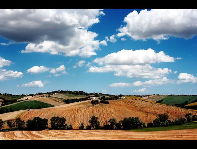 Landscape Blue Orange