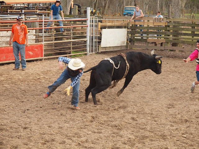 Rodeo Bucking Bulls http://www.flickr.com/photos/mrchriscornwell/4436613575/