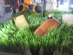 arecales(0.0), field(0.0), soil(0.0), produce(0.0), food(0.0), paddy field(0.0), lawn(0.0), agriculture(1.0), grass(1.0), plant(1.0), wheatgrass(1.0), green(1.0), crop(1.0),