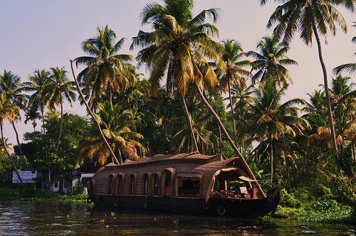cruise on the backwaters