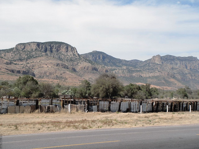 Sierra de San Miguelito - México SLP 2010 4189
