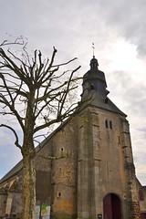 église Saint-Aubin de Tourouvre  (France)
