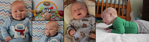 Ryder-2months-collage