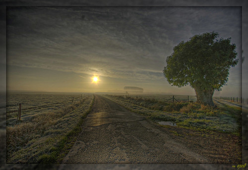 sunrise belgium willow 1020mm hdr abigfave pentaxk10 vanagram salzherz artofimages bestcapturesaoi mygearandmepremium mygearandmebronze
