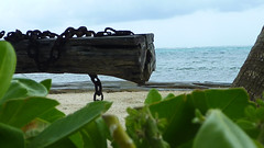 Ambergris Caye - San Pedro - Chains