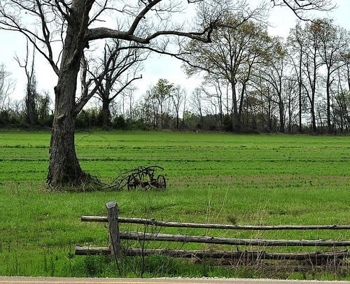 field sulky openfield