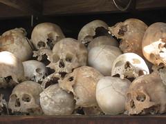 pleurotus eryngii(0.0), agaricus(0.0), oyster mushroom(0.0), mushroom(0.0), agaricaceae(0.0), fungus(0.0), agaricomycetes(0.0), matsutake(0.0), champignon(0.0), shiitake(0.0), bone(1.0), skull(1.0),