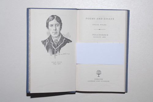 biography of oscar wilde essay Essay, biography or paragraph on oscar wilde great author complete biography for class 10, class 12 and graduation and other classes.