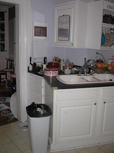 Renovations 09 - kitchen before