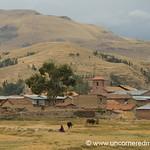 Rural Peru Near Lake Titicaca