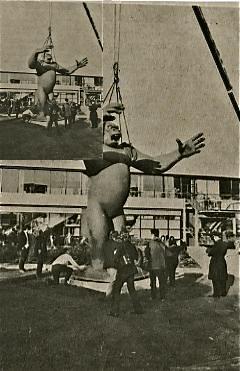 King Kong is set down