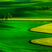 Palouse In The Springtime by kevin mcneal