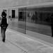 Passing by... by Patrícia Raimond
