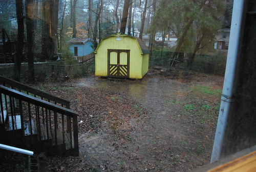 Flooded backyard