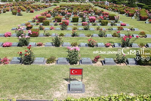 재한유엔기념공원/United Nations Memorial Cemetery in Korea