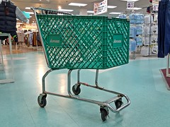 Former Ames shopping cart