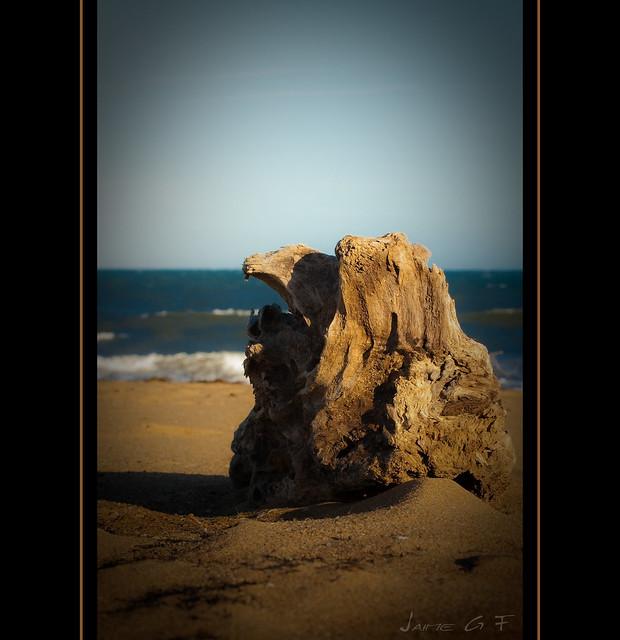 Soledad de otoño.  (Foto 10.000)