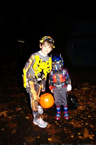 transformer brothers bumblebee and optimus prime embark on a quest for energon    MG 7171