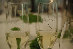 glass bottle(0.0), champagne(1.0), wine(1.0), drinkware(1.0), stemware(1.0), distilled beverage(1.0), glass(1.0), white wine(1.0), champagne stemware(1.0), drink(1.0), alcoholic beverage(1.0),