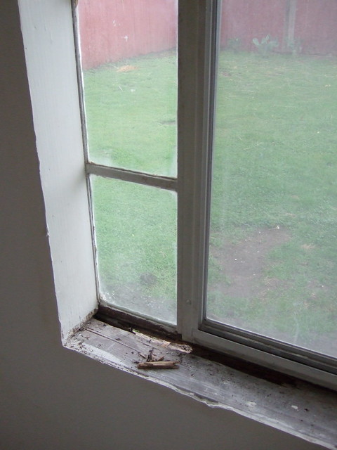 Replace Rotted Window Sill Pictures To Pin On Pinterest Pinsdaddy