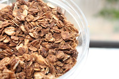 meal(0.0), breakfast cereal(1.0), breakfast(1.0), produce(1.0), granola(1.0), food(1.0), dish(1.0), muesli(1.0), cereal(1.0), cuisine(1.0), snack food(1.0),