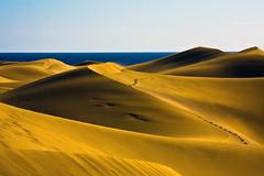 Desertic area