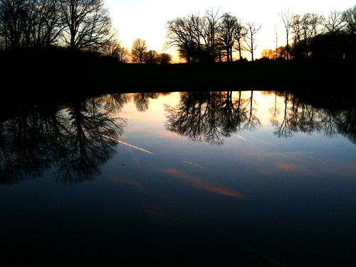 sunset reflections pond iphone