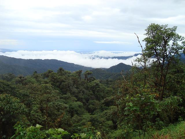 Ecuador, Oriente
