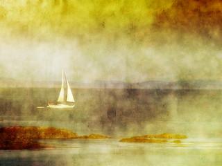 Light, God's eldest daughter...  ~Thomas Fuller