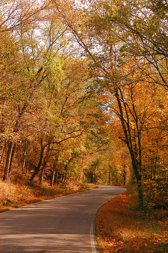 Fall in Switzerland County, Ind. | by Switzerland County (IN) Tourism