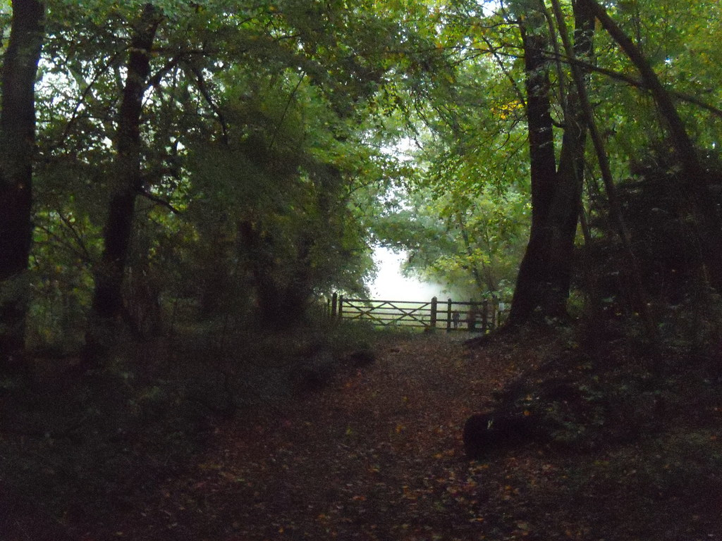 Misty gate Otford Round Walk
