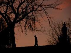 A walk at twilight