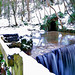 Loftus Woods - Waterfall