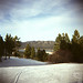 12/19/2009 - Big Bear Holga 10
