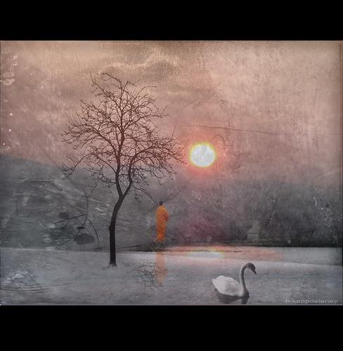 Holy Swan