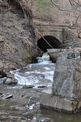 River Ruins @ Saratoga Spa State Park