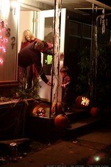 sequoia trick or treats solo    MG 7595