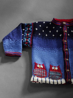Dale of Norway Baby Owl - Sweater Sleeve