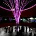_LED_ Light Exhibition Design