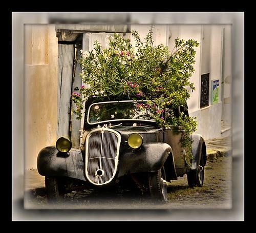 GREENPEACE CAR