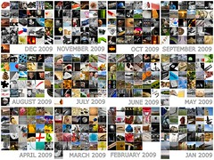 Project365 2009 Thumbnails