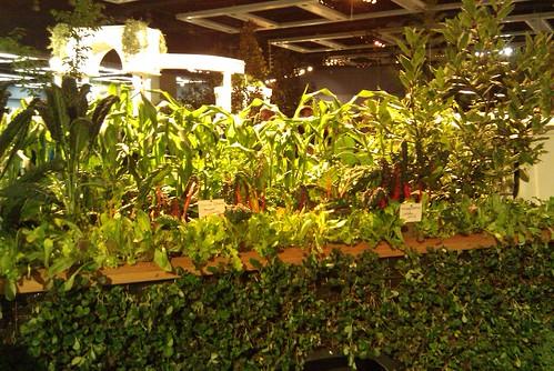 Truck bed garden