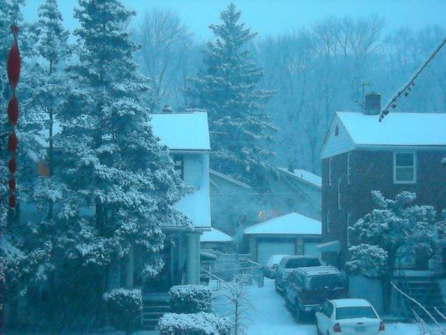 1st Blizzard Feb.5, 2010