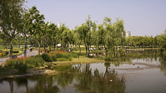 Enjoy your day at Shanghai Century Park - Things to do in Shanghai