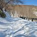 Nasu Kogen - Winter 17