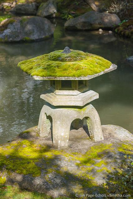 Mossy stone lantern